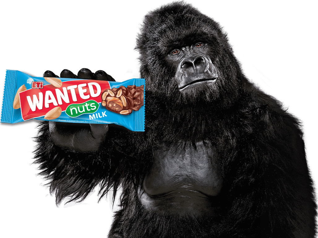 ETI wanted - gorilla